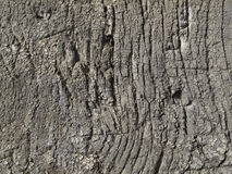 Very old weathered wood texture Stock Photos