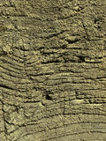 Very old weathered wood texture Royalty Free Stock Images
