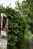 Very old door with pathway and nature royalty free stock images