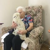 Very old woman being kissed by a loving fluffy dog sitting on her lap. A great grandmother sitting in a chair in a nursing home nursing a fluffy white dog that stock photos