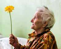 Very old woman with flower Royalty Free Stock Photos