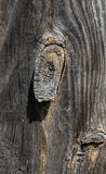 Very Old Wood Background. Old natural wooden shabby background close up, macro shooting Stock Photos