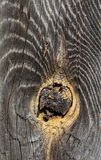 Very Old Wood Background. Old natural wooden shabby background close up, macro shooting Royalty Free Stock Image