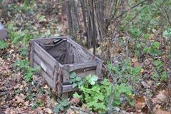 A very old wooden box outside on ground royalty free stock photography