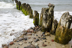 Very old wooden breakwaters Royalty Free Stock Photo