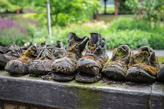 Very old work shoes. Weatherd old work shoes overgrown with moss as a symbol of impermanence Stock Image