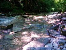 Very picturesque creek in the mountains. Very picturesque stream in the mountains enveloped in vegetation and trees Royalty Free Stock Photography