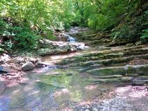 Very picturesque creek in the mountains. Very picturesque stream in the mountains enveloped in vegetation and trees Stock Images
