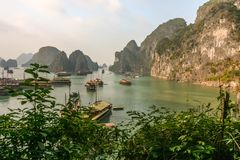 Boats on green water in Halong Bay. Very popular activity for tourists, a cruise inside a wonderful landscape in Halong Bay, Vietnam Royalty Free Stock Photography