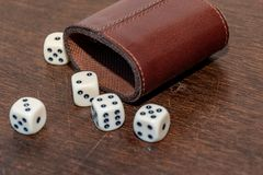 Very popular game with dice in a room or at home royalty free stock photo