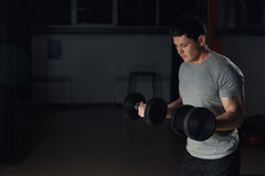 Very power athletic guy bodybuilder, execute exercise with dumbbells, in dark gym. Royalty Free Stock Photography