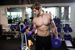 Very power athletic guy , execute exercise with dumbbells, in gym hall Stock Image