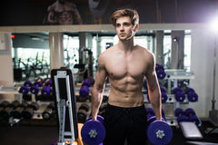 Very power athletic guy , execute exercise with dumbbells, in gym hall Royalty Free Stock Photography