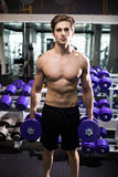 Very power athletic guy , execute exercise with dumbbells, in gym hall Royalty Free Stock Image