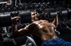 Man bodybuilder in gym Stock Image