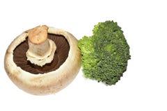 Beautiful colorful mushrooms close up royalty free stock photos