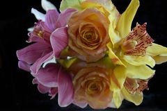 Beautiful rose with orchids close up on the mirror stock image