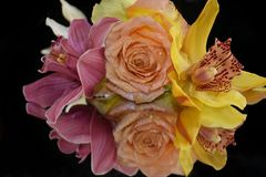 Beautiful rose with orchids close up on the mirror stock photo