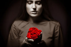 Very pretty woman with rose Stock Images