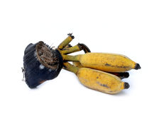 Very ripe banana Royalty Free Stock Image