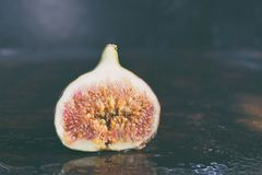 A very ripe blue fig on a dark background. Organic fruits. Healthy food royalty free stock photo