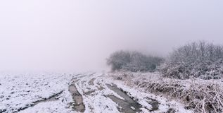 Very rutted path in foggy snowy morning Stock Images