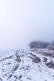 Very rutted track in foggy snowy morning Stock Photos