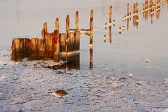 Very salty lake (lima), salt crystals on the beach, Stock Photos