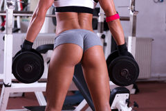 Very sexy ass at the gym club. Very sexy young beautiful ass in thong at gym club Stock Photo