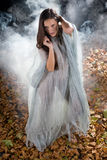Very Sexy witch in halloween gothic style Stock Photos