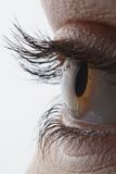Very sharp and detail macro of eye. Beautiful eye stock photo
