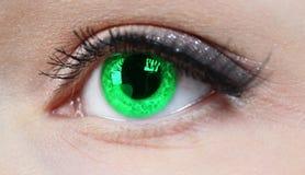 Very sharp and detail macro of eye Stock Photos