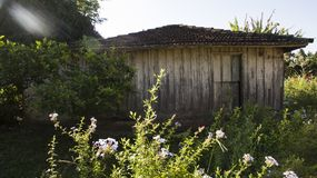 Very simple wooden house, unkempt, a poor farm in Brazil. South America Stock Photos