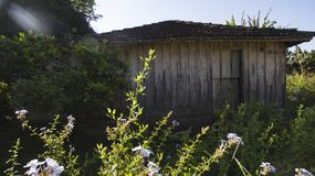 Very simple wooden house, unkempt, a poor farm in Brazil. South America Stock Images