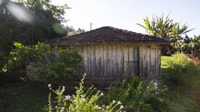 Very simple wooden house, unkempt, a poor farm in Brazil. South America Royalty Free Stock Photography