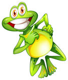A very smiling frog Royalty Free Stock Image