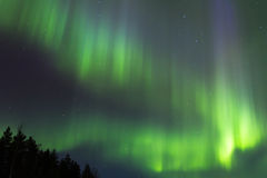 Green beams Stock Image