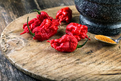 very strongly hot pepper Carolina Reaper Royalty Free Stock Image