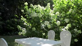 White table in big garden stock footage