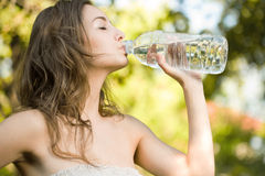 Very thirsty. Royalty Free Stock Photos