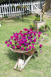Very Unusual Flower Arrangement in front yard. Red petunias in old wheelbarrow and yellow flowers in wishing well with hanging baskets in the background Stock Photo