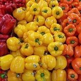 Piles of Red, Orange and Yellow Sweet Peppers. Very vibrant closeup of this staple vegetable. Barcode tags can be seen on some of the peppers Stock Photo