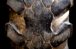 Very wear and tear old tire surface. Texture of very wear and tear old tire surface Stock Image