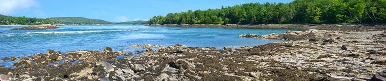 Very wide view of Tidal Falls at low tide Royalty Free Stock Image