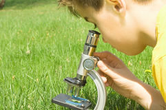 A very young scientist. Schoolboy in nature looking through microscope royalty free stock images