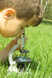 A very young scientist. Schoolboy in nature looking through microscope royalty free stock photo