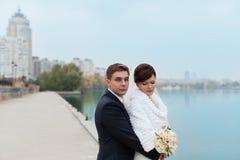 Verzacht greepbruid en bruidegom stock afbeelding