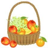 Verzamelde een grootmoedige oogst in de mand zijn appelen, bananen, druiven, dadelpruimen en sinaasappelen Vers mooi fruit Vector royalty-vrije illustratie