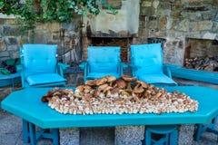 Verzamelde paddestoelenboleet in stapel Stock Fotografie