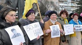 Verzameling tot steun van Nadia Savchenko Stock Fotografie